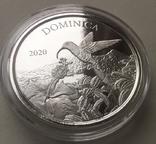 Экзотика Колибри Восточные Карибы Доминика 2020 Dominica, фото №5