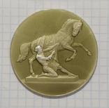 Настольная медаль На Аничковом мосту Укротители коней, фото №2
