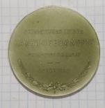 Настольная медаль На Аничковом мосту Укротители коней, фото №3