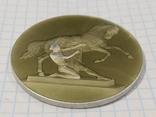 Настольная медаль На Аничковом мосту Укротители коней, фото №4