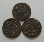 61. Солиды. Боратинки 1661 года. Ян ІІ Казимир Ваза ( 3 штуки )., фото №7