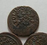 61. Солиды. Боратинки 1661 года. Ян ІІ Казимир Ваза ( 3 штуки )., фото №11