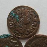 66. Солиды. Боратинки 1664 года. Ян ІІ Казимир Ваза ( 3 штуки )., фото №9