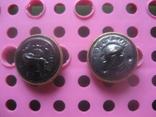 Две погонные пуговицы 50 - е года, фото №5
