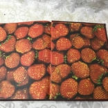 Книга о вкусной и здоровой пище 1986, фото №9