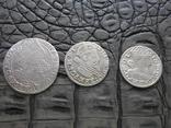 Монеты Сигизмунда, фото №2
