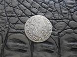 Монеты Сигизмунда, фото №11