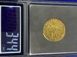 Пять Золотых Монет, фото №4