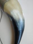 Рог сувенирный, фото №11