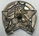 Знак Ворошиловский всадник, копия, фото №7