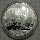 10 юань Панда 2013 года, 1 унция, фото №4