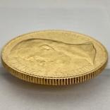 100 франков. 1901. Альберт I. Монако (золото 900, вес 32,24 г), фото №6