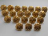 Пуговицы № 2 Гинерала в золоте, фото №2