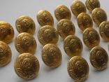 Пуговицы № 2 Гинерала в золоте, фото №3