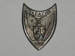 Каппен, знак Соборна Україна 1918 УСС сірий. копія, фото №2
