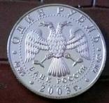 1 рубль 2003 року . Копія срібної , не магнітна, посрібнення 999, фото №4