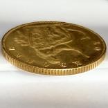 20 крон. 1873. Кристиан IX. Дания (золото 900, вес 8,97 г), фото №5