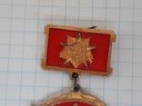 Знак 1 гвардейская армия, фото №3