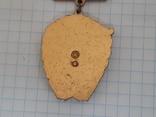 Знак 1 гвардейская армия, фото №8