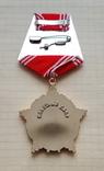 Орден За личное мужество. Копия, фото №4
