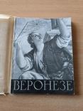 Антонова. Веронезе. 1957, фото №2