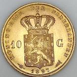 10 гульденов. 1897. Королева Вильгельмина. Нидерланды (золото 900, вес 6,66 г), фото №7