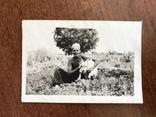В огороде с козой Коза, фото №2