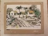 Вьетнамские колхозы.1985 год., фото №4