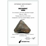 Кам'яний метеорит NWA, 100,6 грам, із сертифікатом автентичності, фото №3