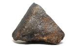 Кам'яний метеорит NWA, 100,6 грам, із сертифікатом автентичності, фото №5