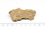 Імпактна брекчія Іллінецького кратеру, 20,6 г, з сертифікатом автентичності, фото №4