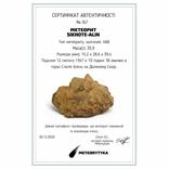 Залізний метеорит Sikhote-Alin, 39,9 грама, з сертифікатом автентичності, фото №3