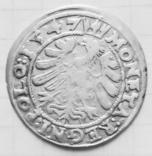 1 грош 1547 года Королевство Польша.Сигизмунд1 Старый, фото №8