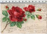 Старинная открытка. 1904 год. Разное.(2), фото №2