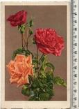 Старинная открытка. После 1945 года. Разное.(2), фото №2