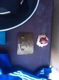 Безкозирка Гюйс, пряга, пагони, пряга, фото №9