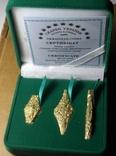 Набор монет гривня київська чернігівська новгородська футляр 2020 набор тип1 гривна, фото №2