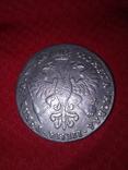 Монета Царской России. Один рубль. Петр Алексеевич(Копия), фото №3