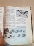 Кулинария 1964 г., фото №7