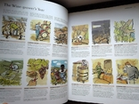 Книга The World Atlas of Wine, Hugh Johnson 2007 атлас вино, большая книга вина, фото №9