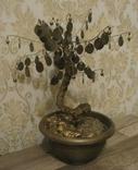 Сувенир Денежное дерево с монетами украинскими, фото №2