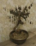 Сувенир Денежное дерево с монетами украинскими, фото №6