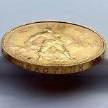 Один Червонец Сеятель. 1976. РСФСР (золото 900, вес 8,63 г), фото №8