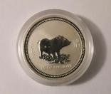 "Монета 50 центов Австралия ""Год свиньи"", 2007 го, серебро, фото №3"