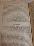 История. Лев Диакон, фото №6