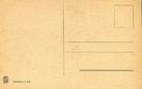 Две обнаженные подруги-арабки. Ню, эротика. 1900-1910-е гг., фото №3