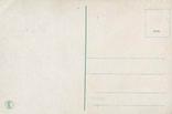 Обнаженная красавица-бедуинка. Ню, эротика. 1900-1910-е гг., фото №3