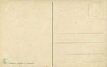 Обнаженная красавица за решеткой в гареме. Ню, эротика. 1900-1910-е гг., фото №3