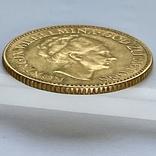10 гульденов. 1925. Королева Вильгельмина. Нидерланды (золото 900, вес 6,70 г), фото №10