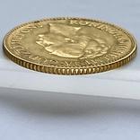 10 гульденов. 1925. Королева Вильгельмина. Нидерланды (золото 900, вес 6,70 г), фото №11